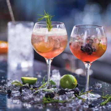 gin_tonic_pohar